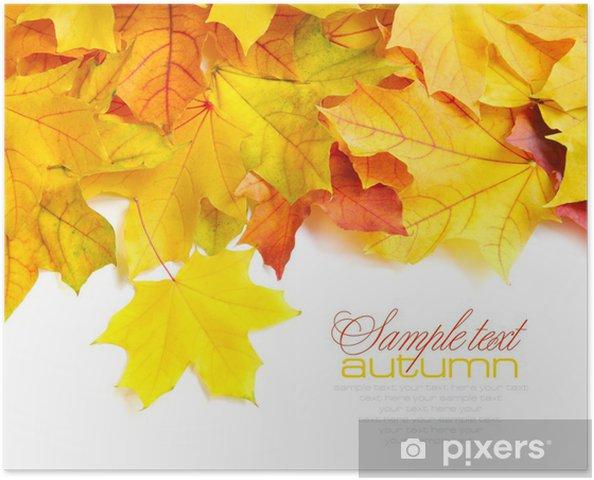 Poster Cadre des frontières de l'automne coloré laisse isolé sur blanc - Arrière plans