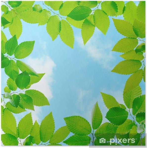 Poster Cadre vert frais - Plantes