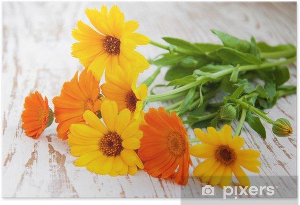 calendula bouquet Poster - Flowers
