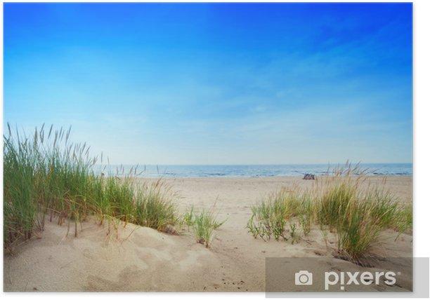 Calm beach with dunes and green grass. Tranquil ocean Poster - Destinations