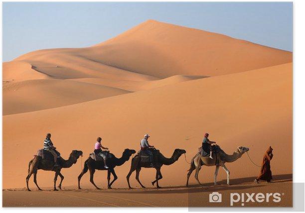 camel caravan in the sahara desert Poster - Desert