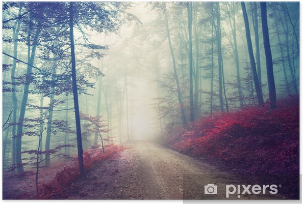 Póster Camino forestal magia del vintage - Bosque
