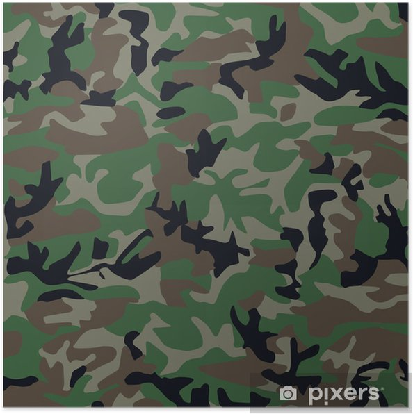 Poster Camouflage - Thèmes