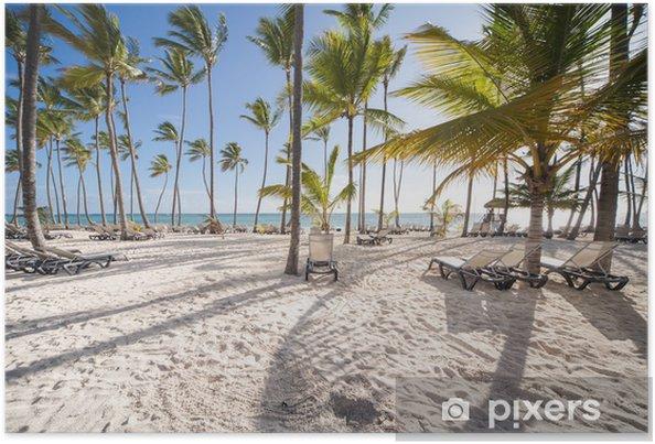 Poster Caribische strand - Palmbomen