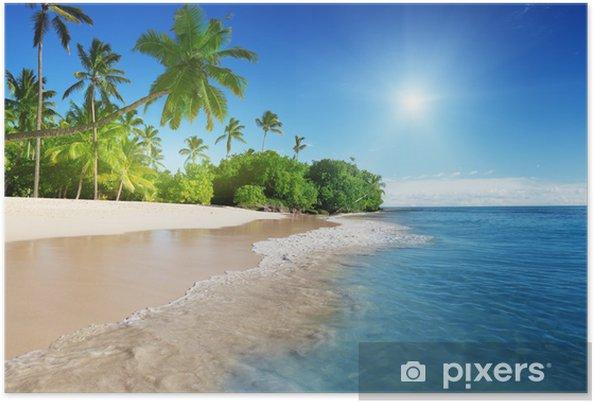 Poster Caribische zee en palmen - Thema's