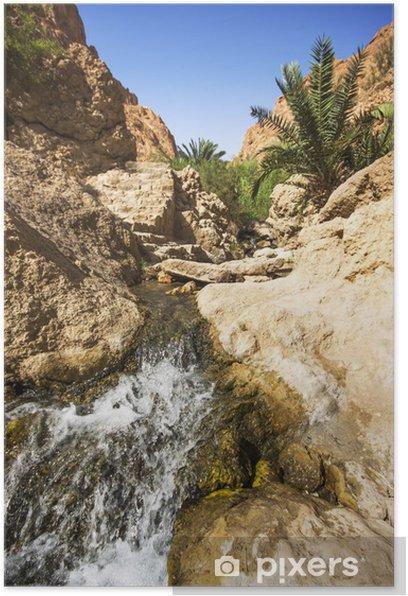 Poster Cascade dans oasis de montagne de Chebika, Tunisie, Afrique - Afrique