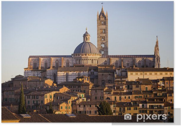 Cathedral in the old town of medieval Siena at sunset. Poster - Europe