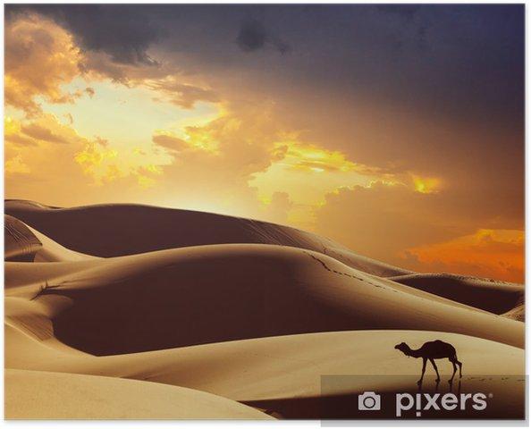 Poster Chameau dans le désert du Sahara, le Maroc - Thèmes