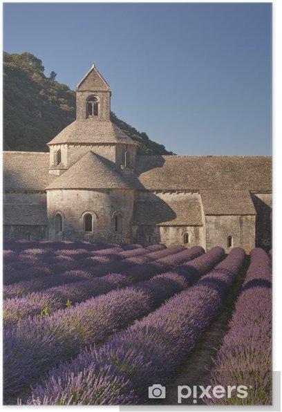 Poster Champ de lavande à l'abbaye de Sénanque en Provence - Europe