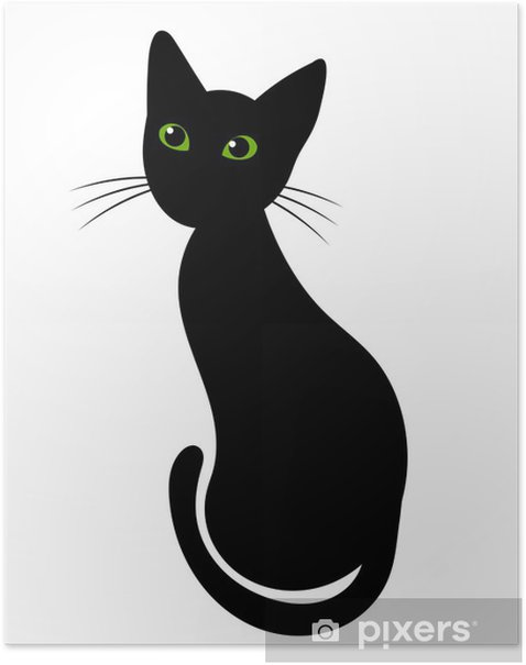 Poster Chat noir - Mammifères