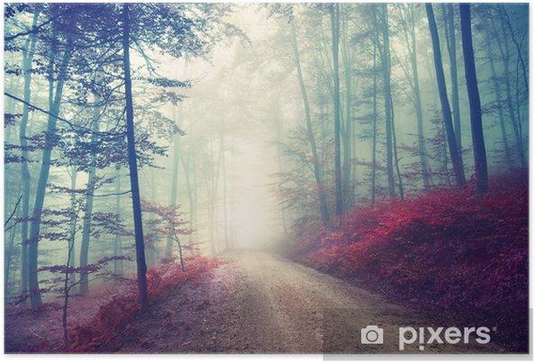 Poster Chemin magique dans la forêt - Forêt