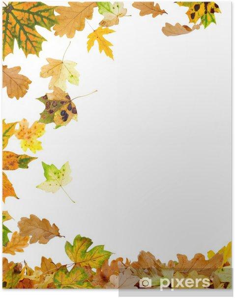 Poster Chêne d'automne et de feuilles d'érable de tomber au sol - Saisons