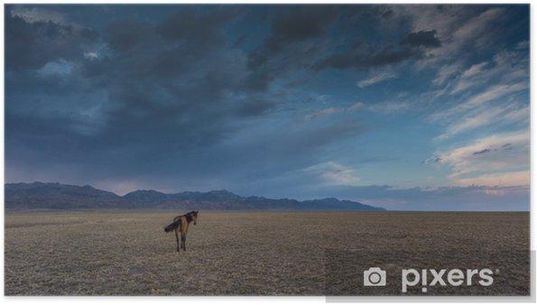 Poster Cheval dans la steppe - Mammifères