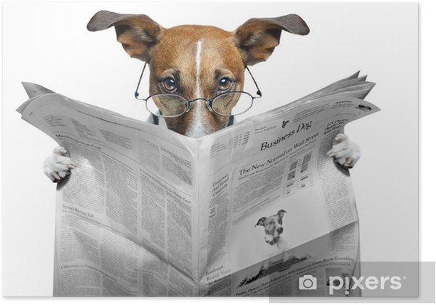 Poster Chien lisant un journal - Thèmes