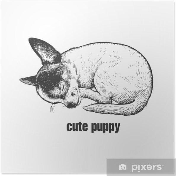 Poster Chiot Dort Race De Chien Chihuahua Dessin Noir Et Blanc Fait à La Main D Un Animal De Compagnie