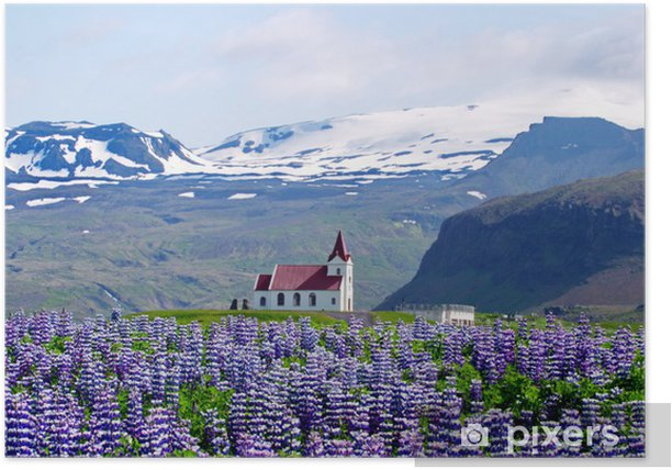Church of Mountains and Lupines Poster - Agriculture