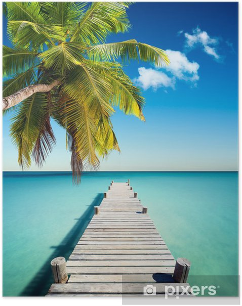 Coconut beach Poster - Palm trees