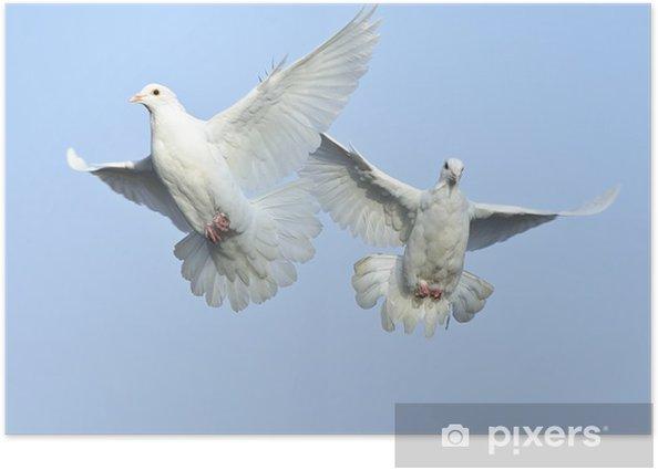 sous le ciel la paix