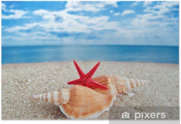 Poster Coquillages et étoiles de mer sur une plage - Arrière plans