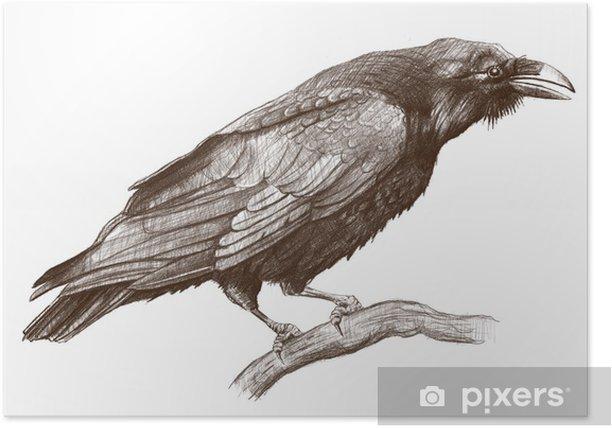 Poster Corbeau - Art et création