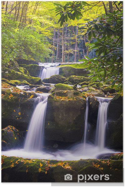 Poster Couleurs d'automne dans les Smoky Mountains - Saisons