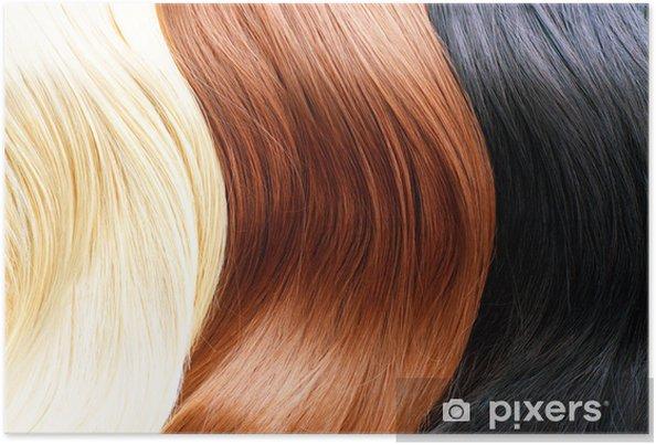 Poster Couleurs De Cheveux Palette Couleurs De Cheveux Blonds