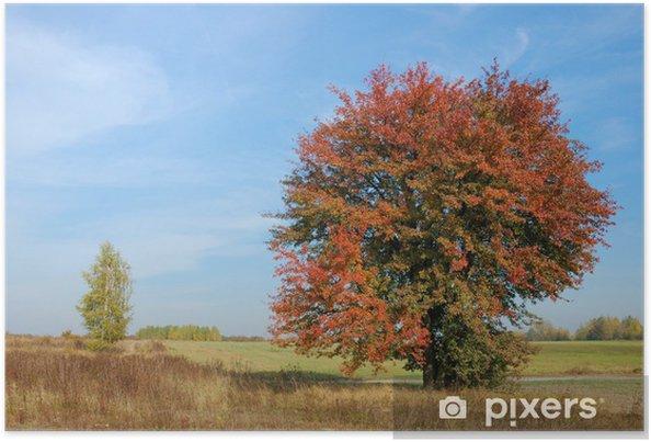 Poster Couleurs de l'automne - Campagne