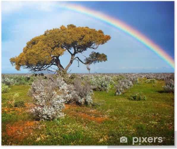 Poster Couleurs-de-la-rainbow - Merveilles naturelles