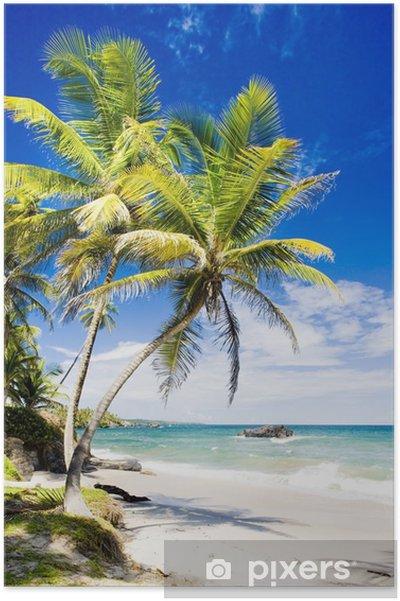 Póster Cumana Bay, Trinidad - Temas