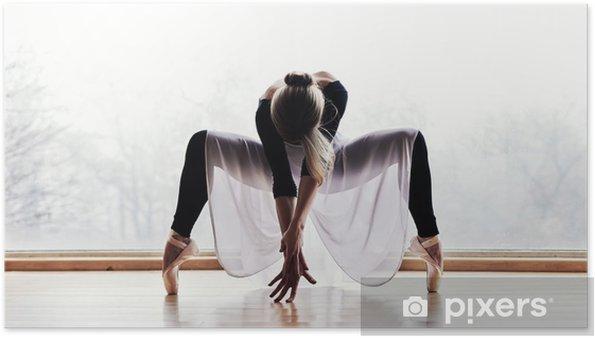 Poster Danceur de ballet - Thèmes