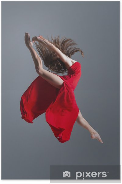 Poster De danser - Thema's