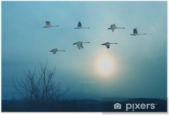 Poster De lente of herfst migratie van kranen - Landschappen