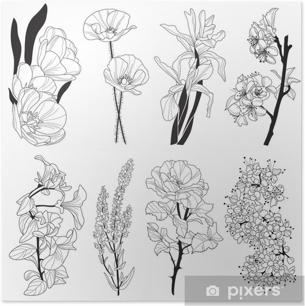 decorative flowers Poster - Flowers