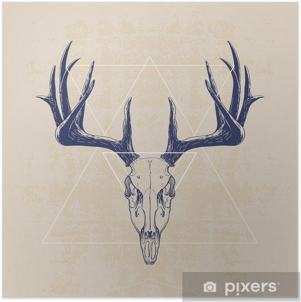 Poster deer skull - Mammifères