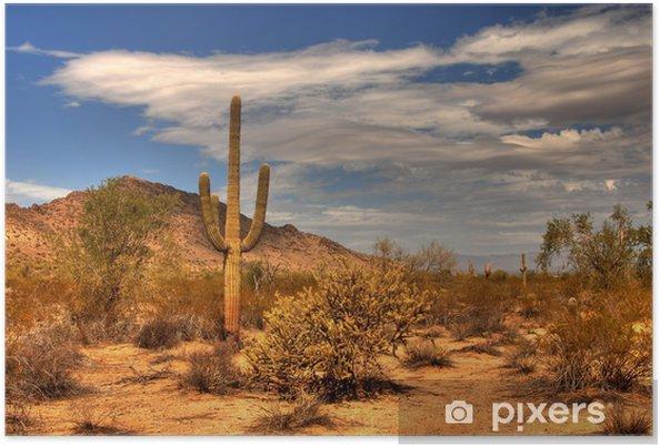 Poster Desert Mountain - Vildmark