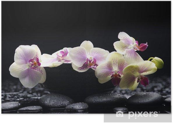 Poster Direction orchidée blanche dans un bol avec des pierres de thérapie - Thèmes