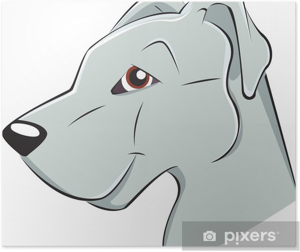 Poster Dogo - Mammifères