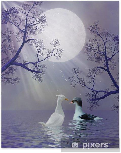 Ducks Poster - Wonders of Nature