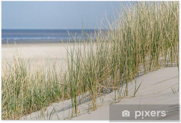 Poster Duinen bij de kust van Nederland - Nederland