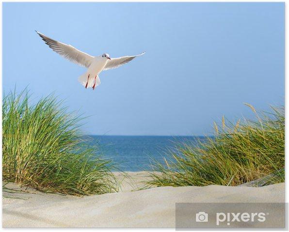 Düne, Möwe und Meerblick Poster - Sea and ocean