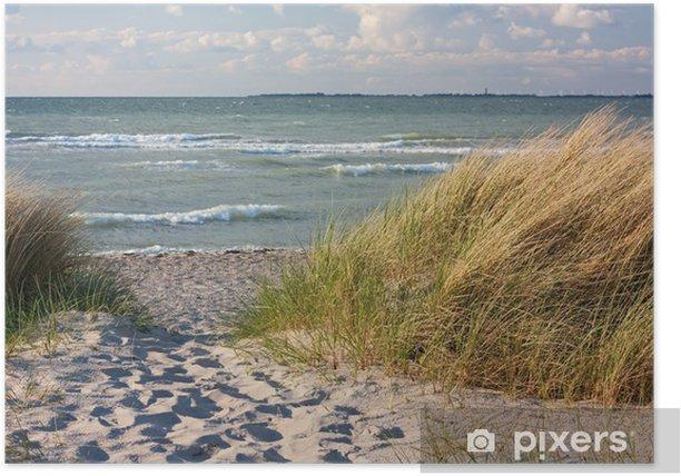 Dünenlandschaft am Strand der Ostsee bei Heiligenhafen Poster - Themes