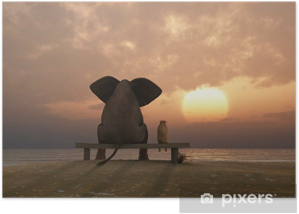 elephant and dog sit on a summer beach Poster - Destinations