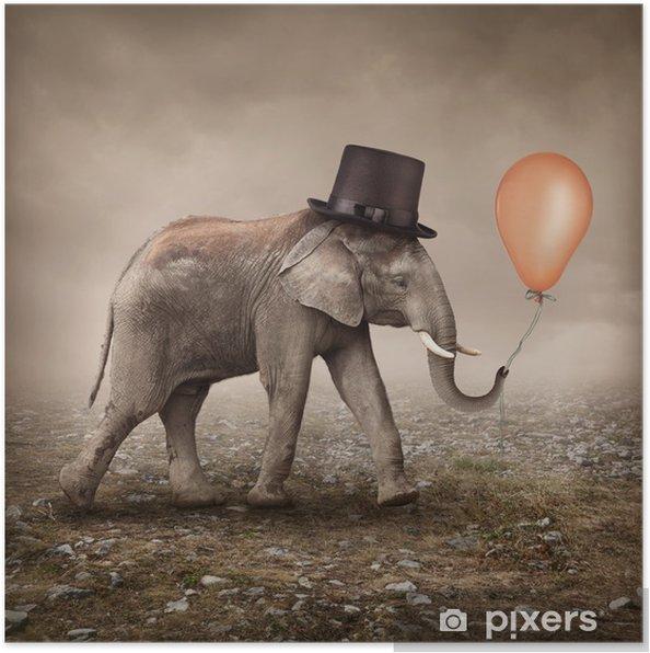 Poster Éléphant avec un ballon - Thèmes
