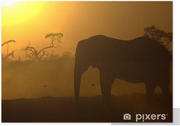 Poster Eléphant d'Afrique au lever du soleil - Thèmes