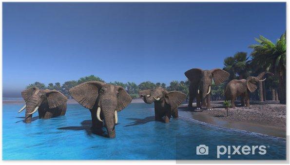 Poster Éléphant - Thèmes