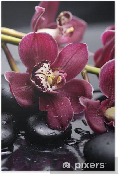 Poster Ensemble de la branche magnifique orchidée rouge sur les pierres réflexion - Thèmes
