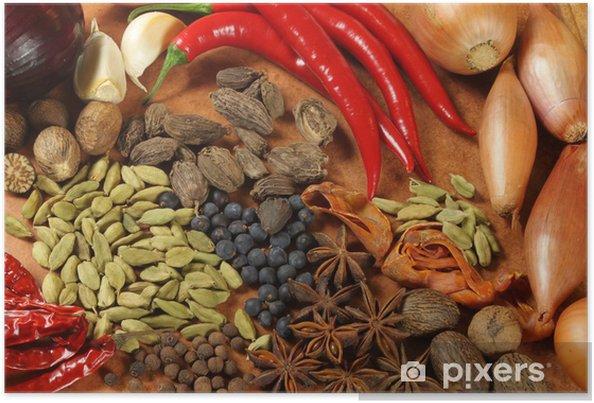 Poster Épices et fines herbes - Epices, herbes et condiments