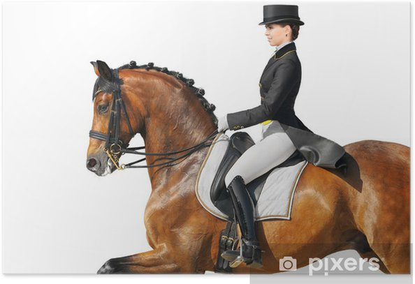Equestrian sport - dressage Poster - Individual Sports
