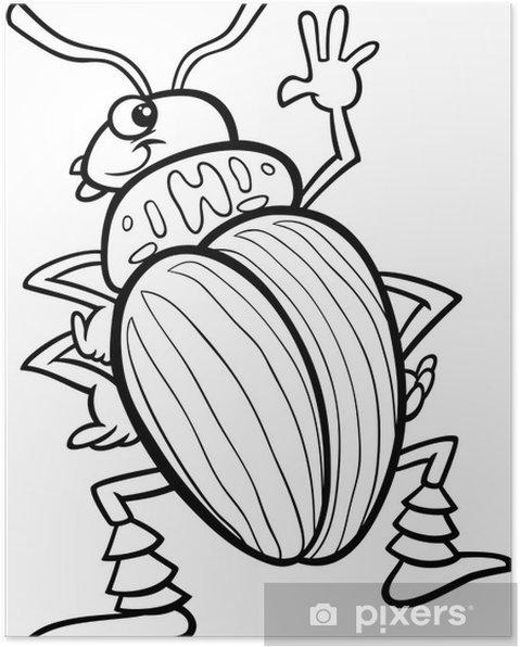 Póster Escarabajo de la papa para colorear de insectos • Pixers ...