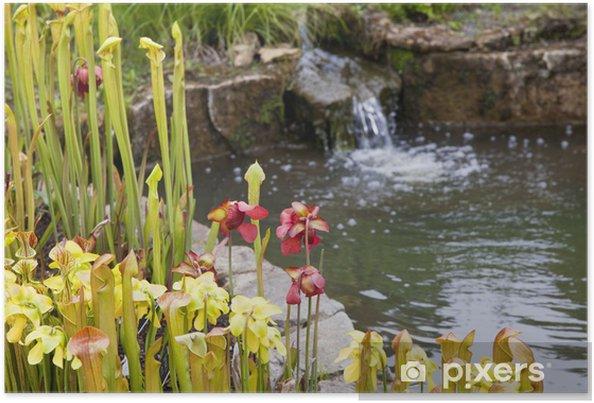 Poster Étang de jardin scène avec des fleurs et des mini-cascade